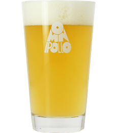 Omnipollo 20cl beer tasting glass