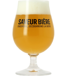 Verre Saveur Bière - 25 cL