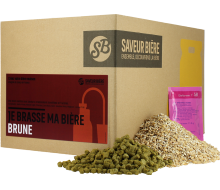 Recharge Beer Kit bière Brune d'Abbaye