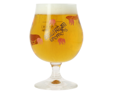 Delirium Tremens - 25cl Glass