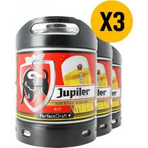 Pack 3 fûts 6L Jupiler