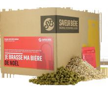 Recharge Beer Kit bière de Noël