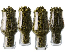French hops selection