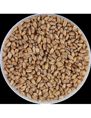 Weyermann Oak-smoked Wheat Malt 4-6 EBC Weyermann