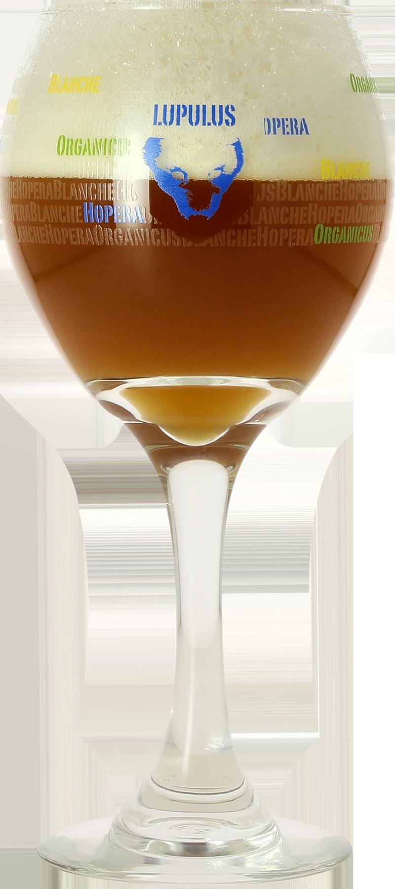 Copa cerveza Lupulus - 25 cl