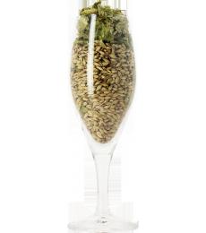 Imperia plain glass