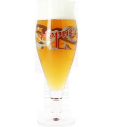 Hopus flute beer glass