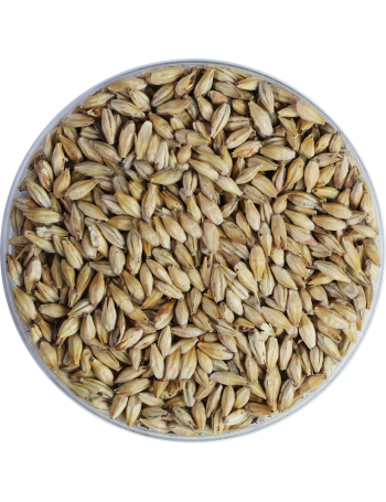 Crystal Malt 150 EBC