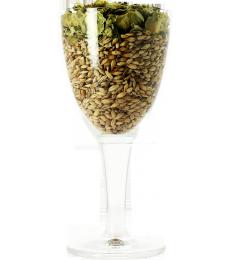 Blank Bohemia glass