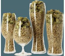 Set de verres de dégustation pour le connaisseur