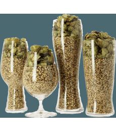Beer Tasting Kit for Connoisseurs