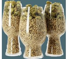 Set de verres de dégustation craft beer